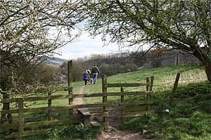 Delightful local walks