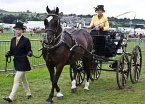 Bakewell Country Show